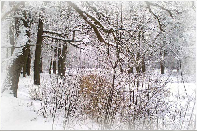 Those Winter Days ..